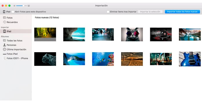 organizar álbumes en Fotos
